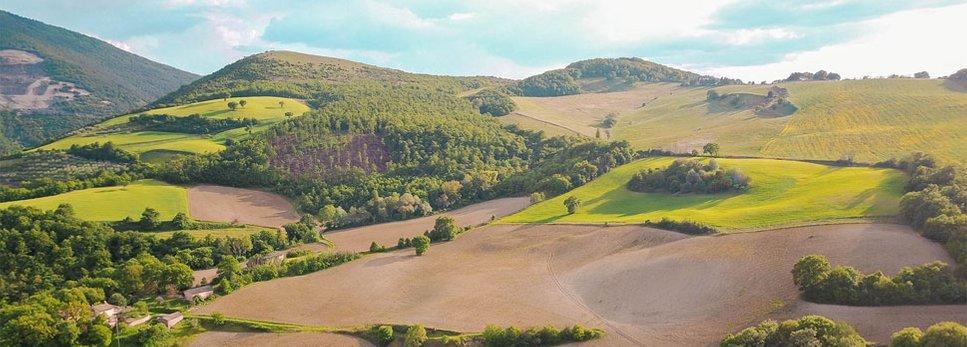 Assisi Retreat Center / Assisi Retreats